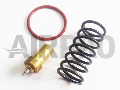 Kit de reparo válvula termostática similar 021.0150-0 / 021.1048-0